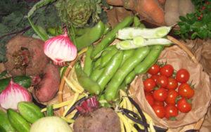 Kost- och hälsocoach